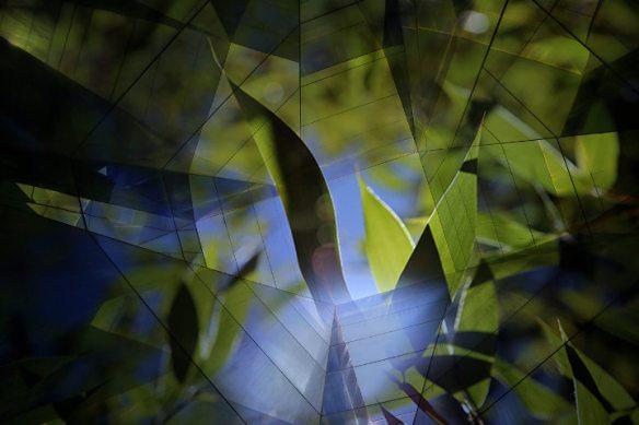 contrast-by-jorge-carrasco-w720