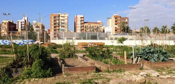 huerto-urbano-cabanal-9777